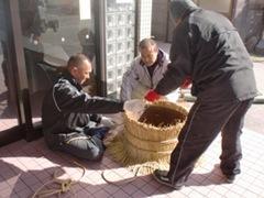 門松作りボランティア2011 003-1
